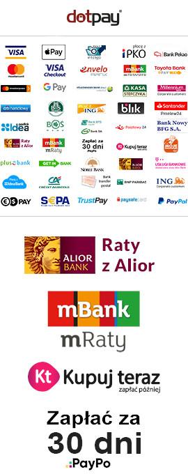 Płatności online i raty